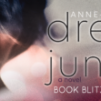 Book Blitz: Dream Junkies by Anne-Marie Yerks